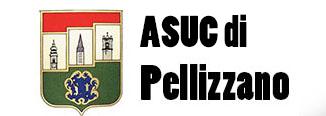 ASUC Pellizzano